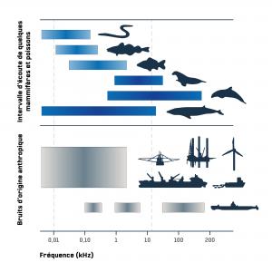 Bruit anthropogéniques comparés à la communication des animaux marins. D'après Slabbekoorn and al. (2010)